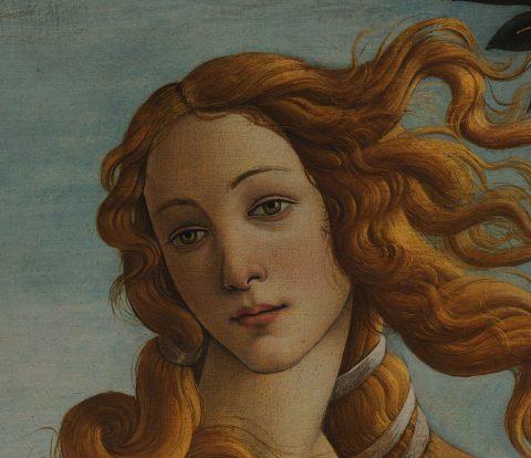Venus Face